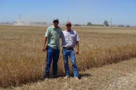 farm brothers.jpg