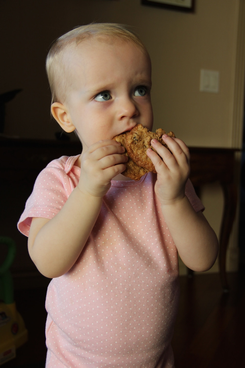 grace oatmeal cookie