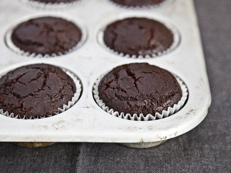 Chocolate Avocado Cupcakes without Butterscotch Frosting