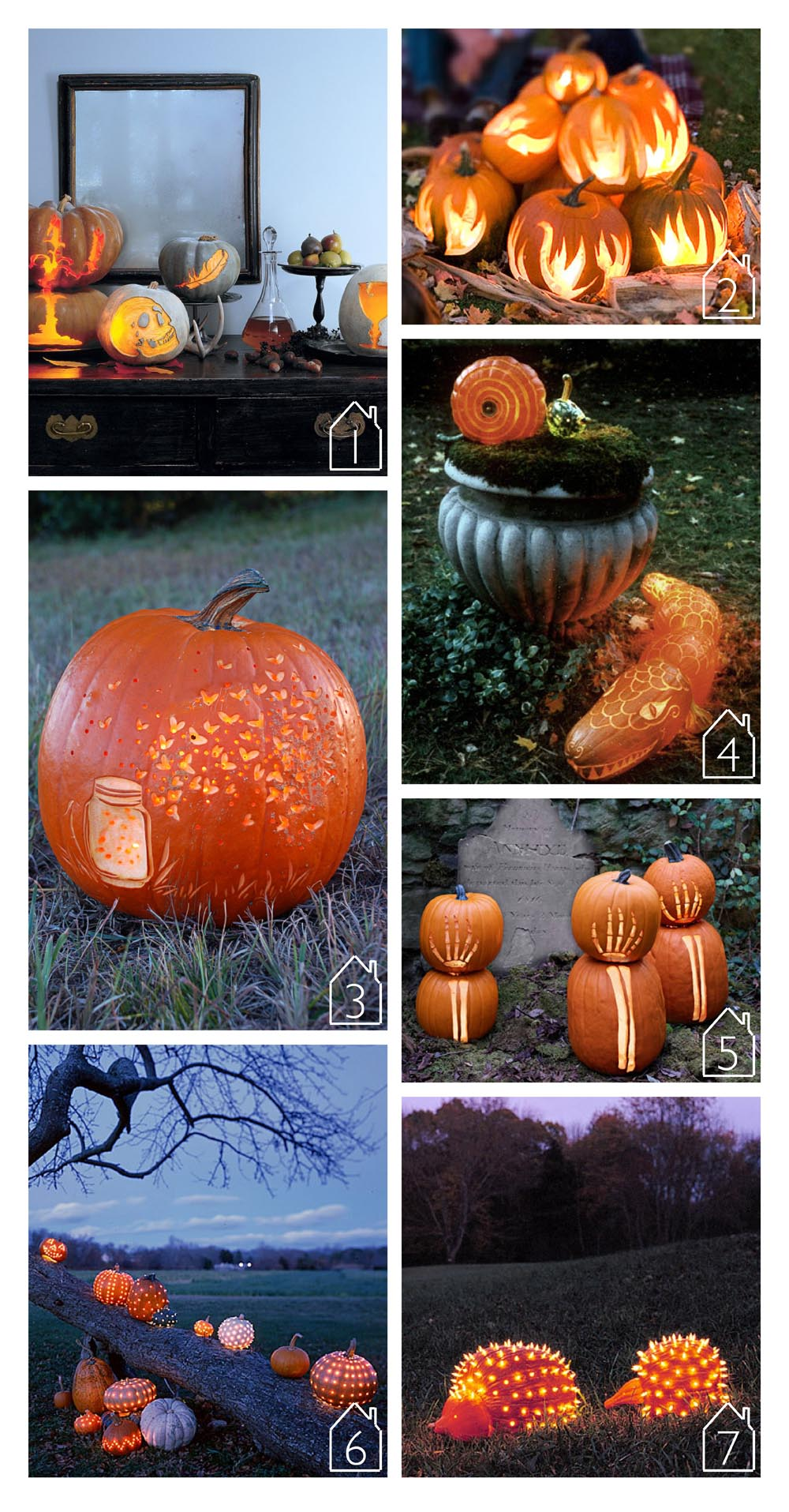 1. etched pumpkins via  Martha Stewart   2. flame pumpkins via  Better Homes and Gardens   3. mason jar pumpkin via  HGTV Gardens   4. alligator pumpkin via  Martha Stewart   5. skeleton pumpkin via  Country Living   6. celestial pumpkins via  Martha Stewart   7. porcupine pumpkins via  Martha Stewart