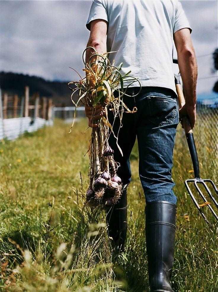 Spring-AgrarianKitchen.jpg