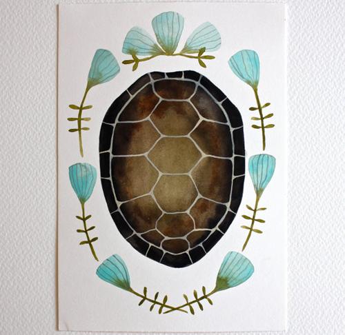 tortoise shell by Marisa Redondo