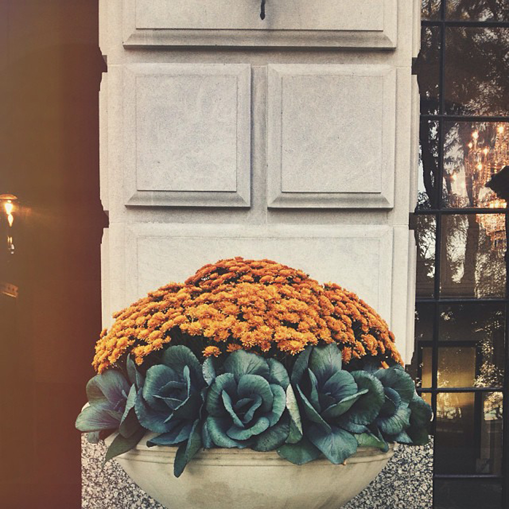 fall pots inspiration to get our gardening started at our new house - source unknown