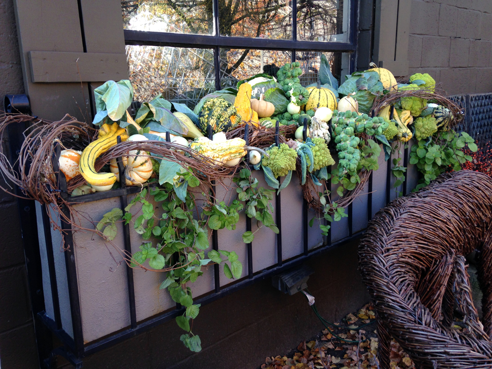 detroit-garden-works-2.jpg