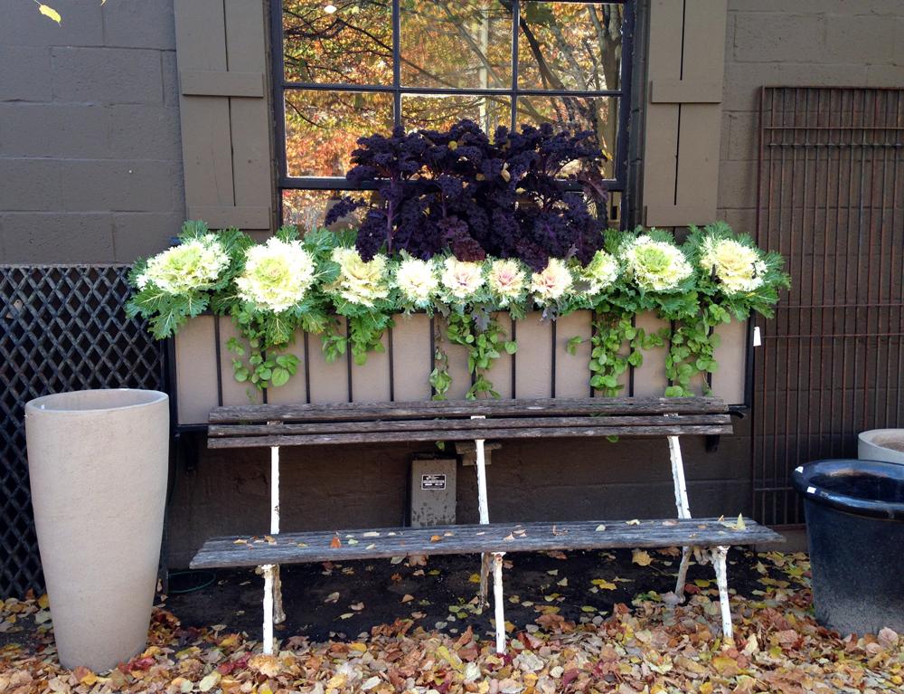 detroit-garden-works-3.jpg