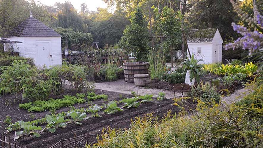 via  Rodale's Organic Life  | THE PLACE HOME
