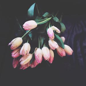 spring | 3.14.2014