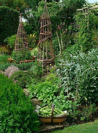 planning an herb garden | 3.29.2016