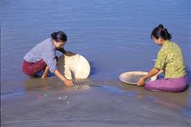 Panning for alluvial gold in the Irrawaddy, Myanmar.