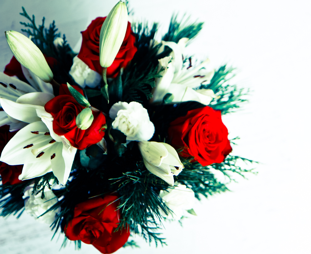 Holiday flowers from a relative that didn't get to see us for Christmas Eve.