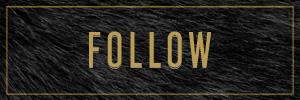 hk.follow.jpg