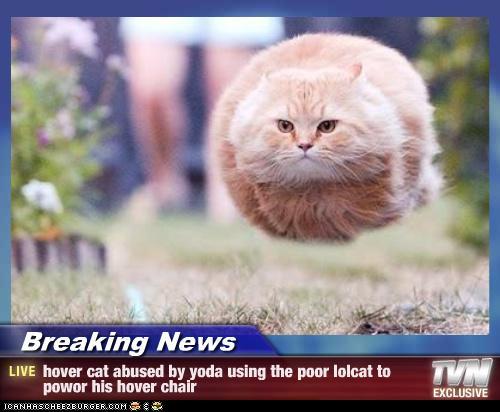 lolcats-hovercat-i10.jpg