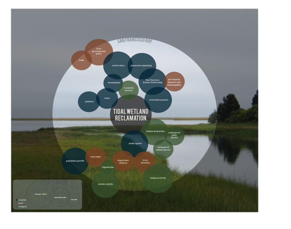 Systems Diagram: Tidal Wetland Reclamation in the San Francisco Bay