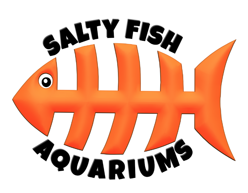 "Logo<a href=""#"">◉</a><strong>Salty Fish Aquariums - San Antonio</strong>"