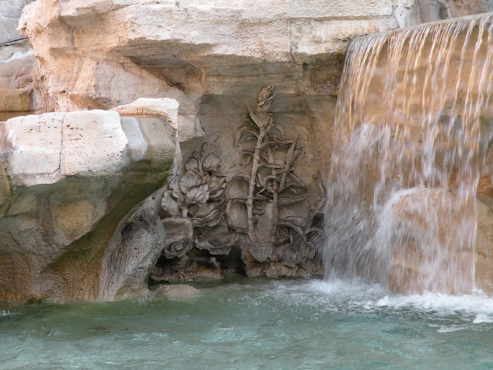 Carved water-loving plants, including  Caltha palustris  and  Arundo donax , emerge from the Trevi basin.
