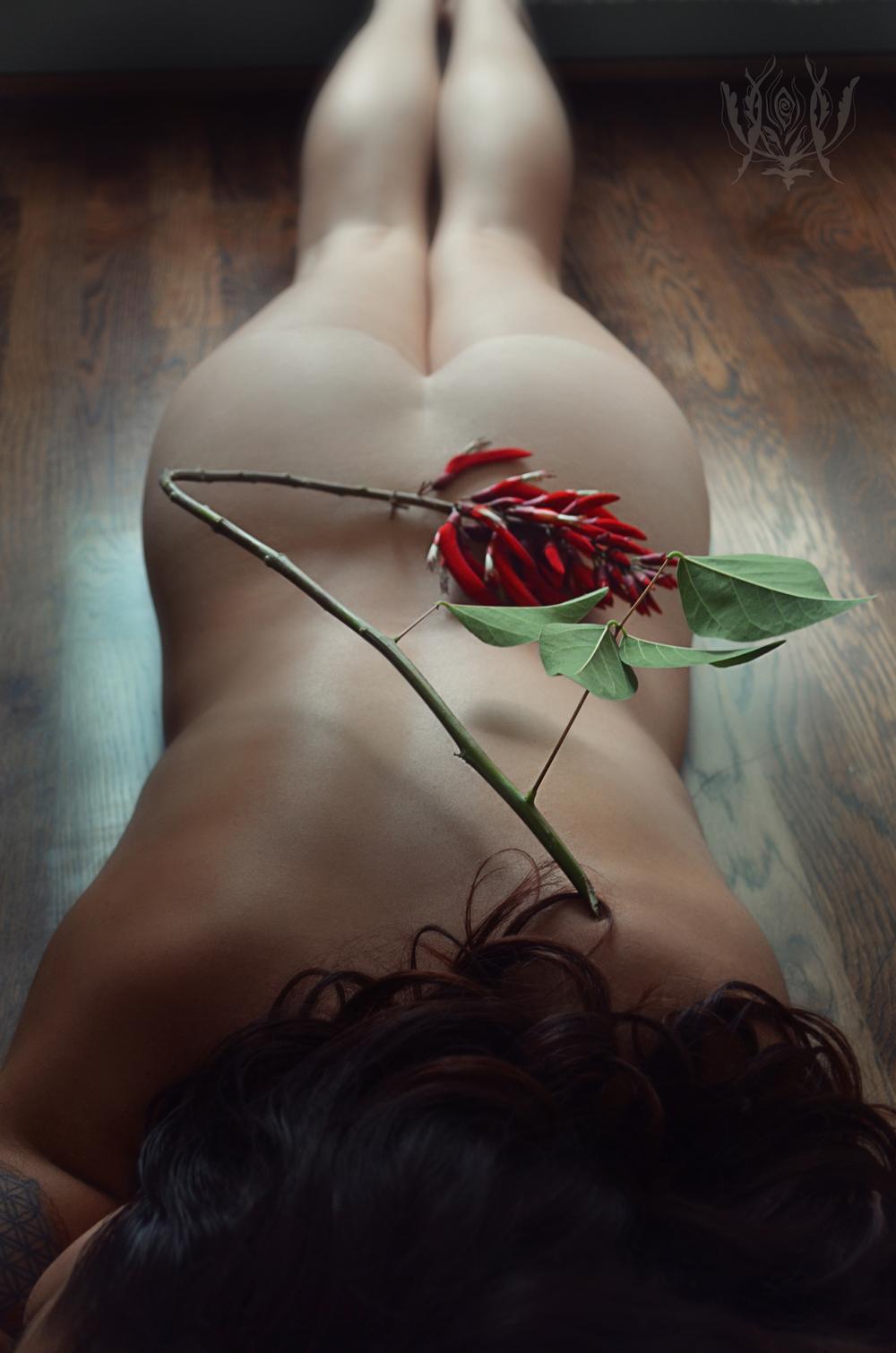 Ivory Rose Boudoir - Elisabeth 2015 vintage bride fine art photography ojai santa barbara los angeles california goddess -57.jpg