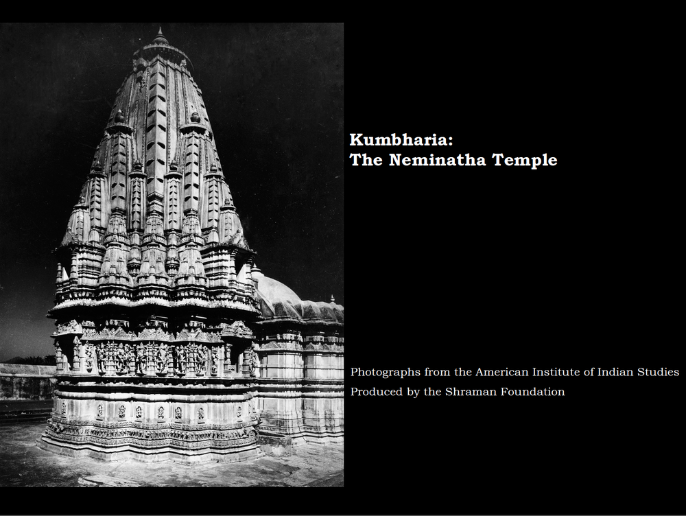 The Neminatha temple is located in the village of Kumbharia in the western Indian state of Gujarat. Kumbharia is renown as home for six finely carved marble temples. The Neminatha temple (ca. 12th century CE) is the largest of all. This photo book details this marvelous structure and provides insight into the ideas that inspired its design.