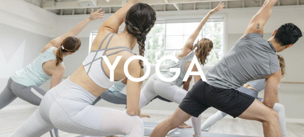 Yoga Website Header_JPEG.jpg
