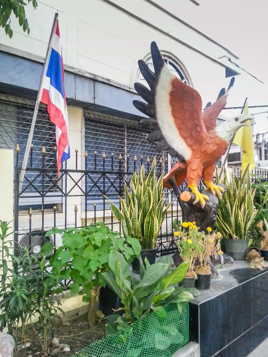 An Eagle and a Flag