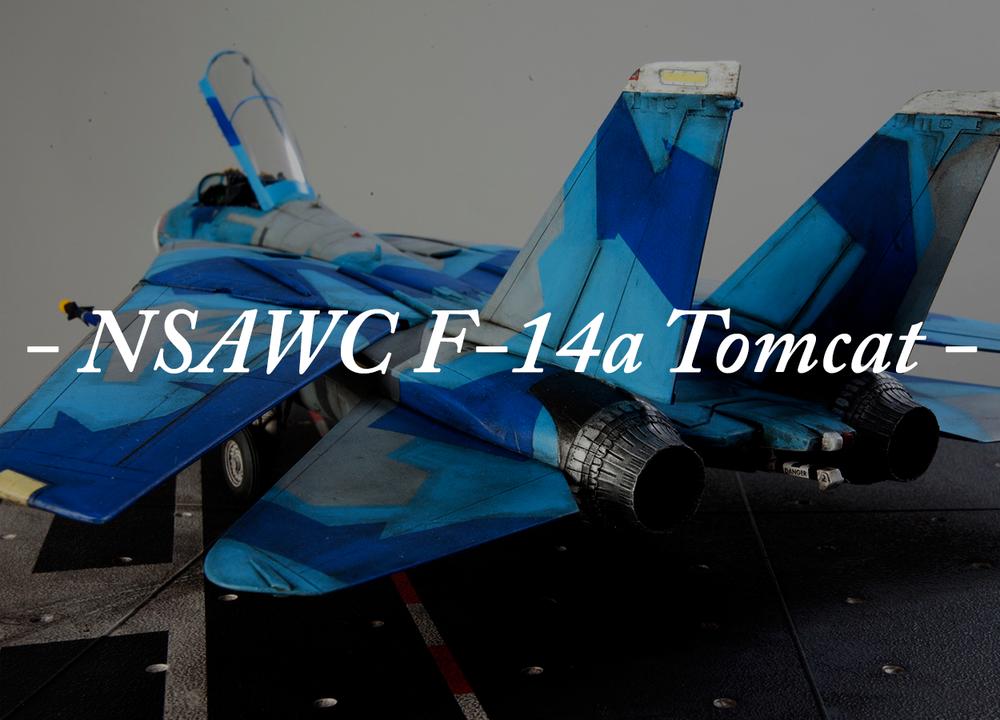 NSAWC Tomcat