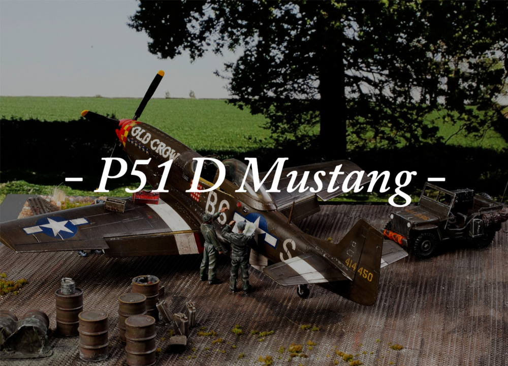 P51 D Mustang