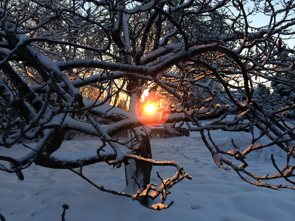 Sunrise on a cold and snowy morning.