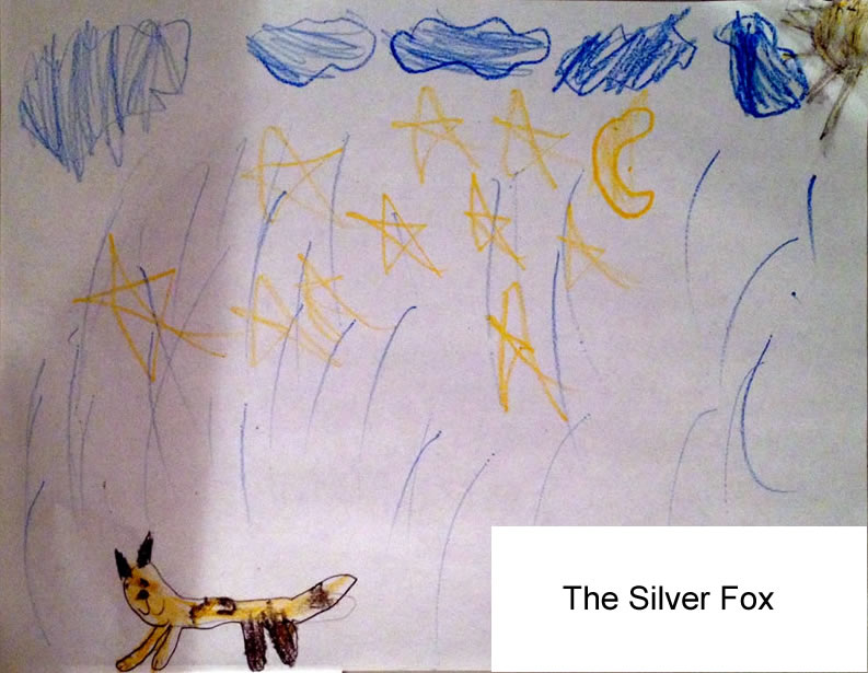 Drawing of the Silver Fox by my daughter