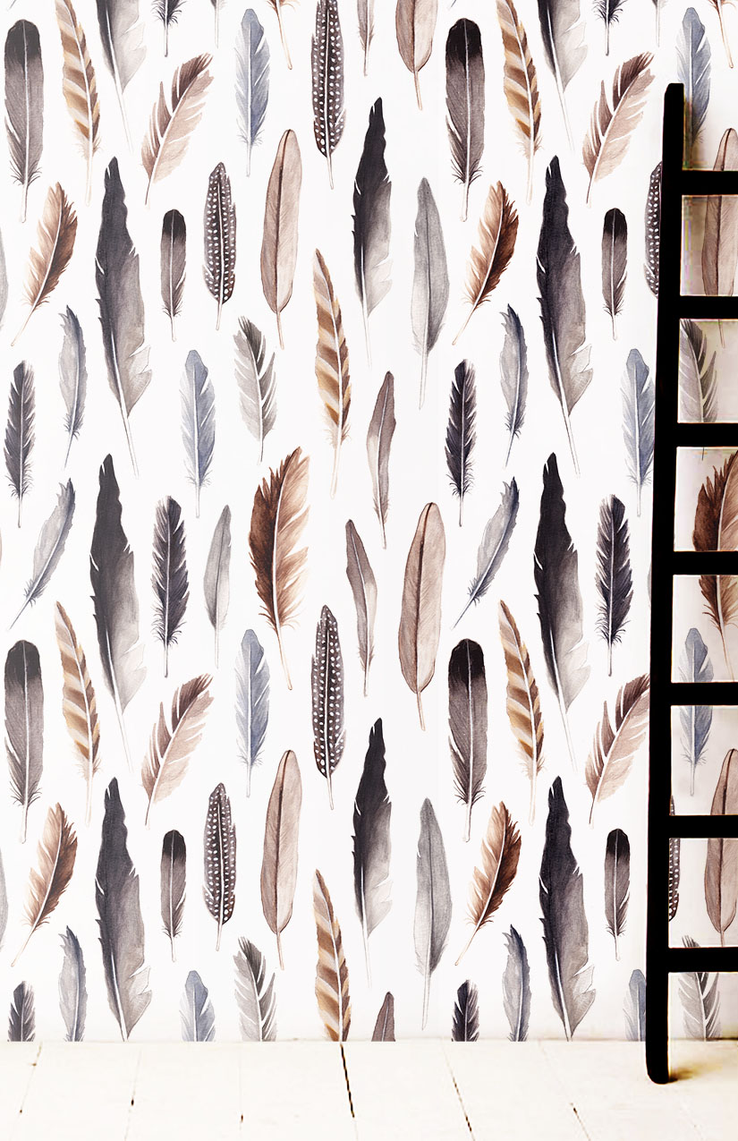feathers_roomshot.jpg