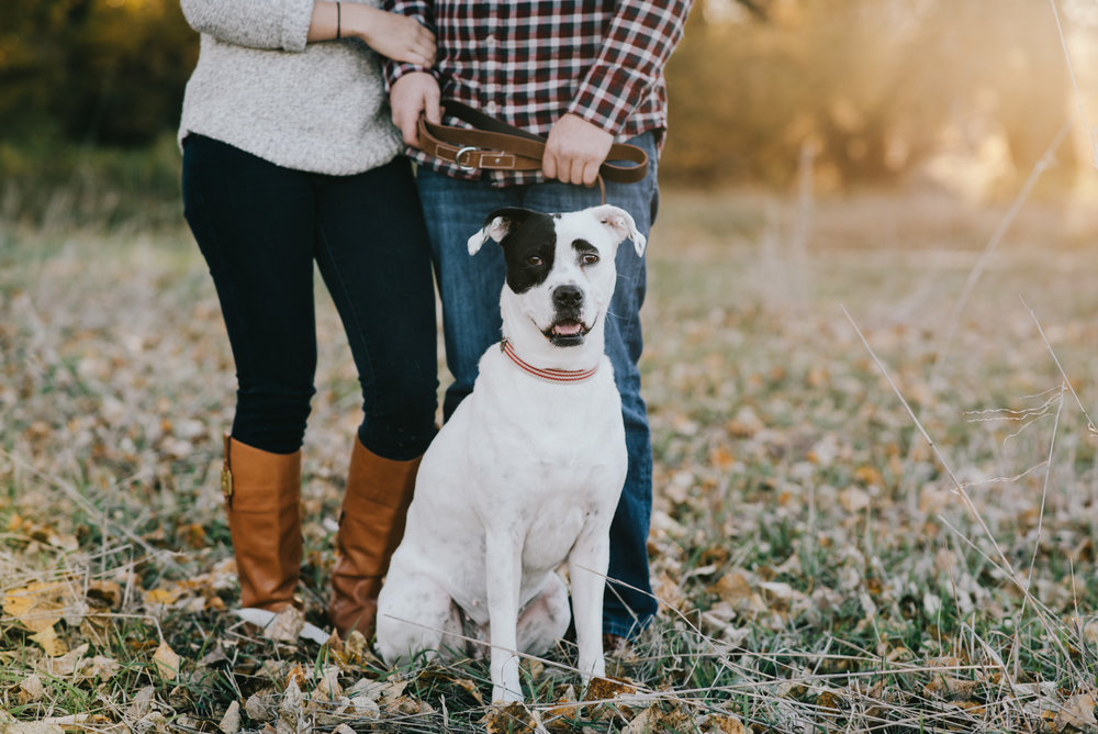 I love when couples bring their pups to their engagement sessions! They're part of the family after all. Look how cute this little lady is, with the black patch over her eye!