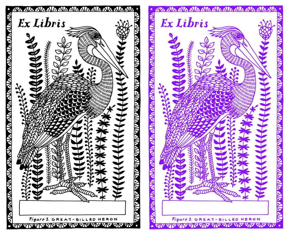 birds_bookplates4a.png