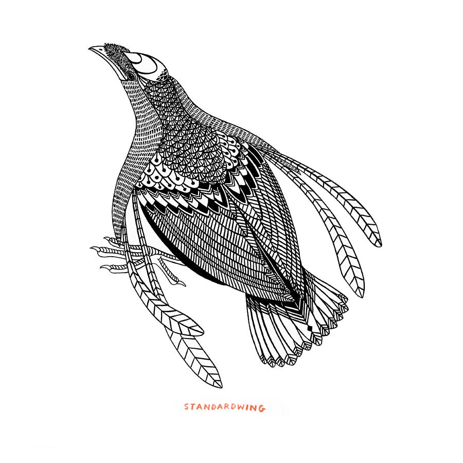 bird_bw21.png