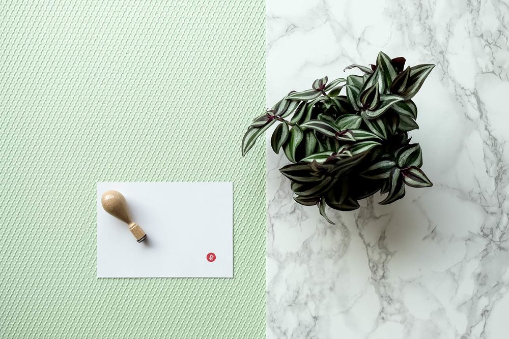 Hanko stamp with plant on marble with green textured surface