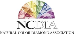 NCDIA Logo White.jpg