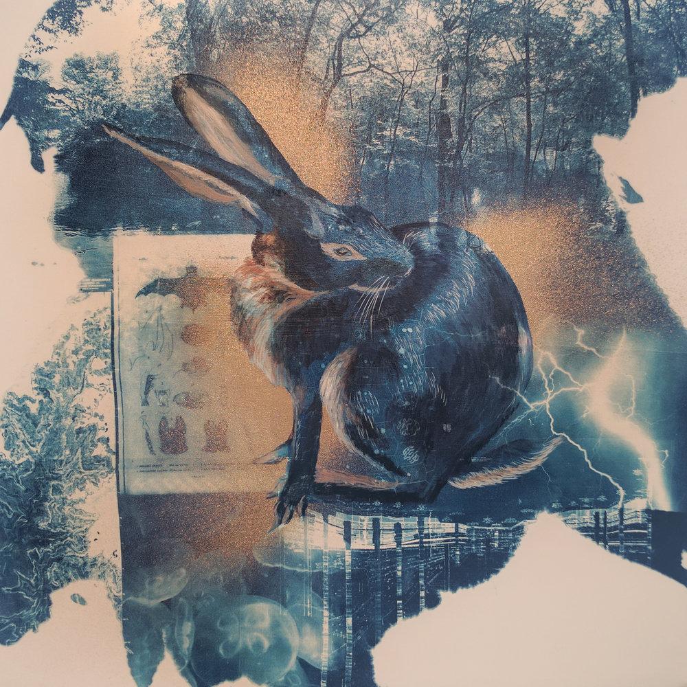 "Belgian Hare Rabbit, 18x18"""