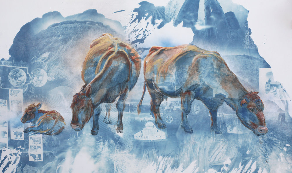 "Red Angus Cows  by Naomi Friend. Cyanotype, spraypaint, and acrylic on cotton, 32x60"". 2018."