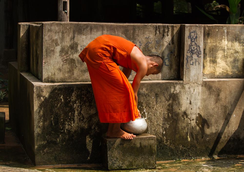 kid monk website.jpg