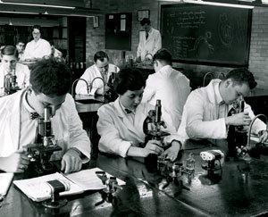MicroscopeWork.jpg