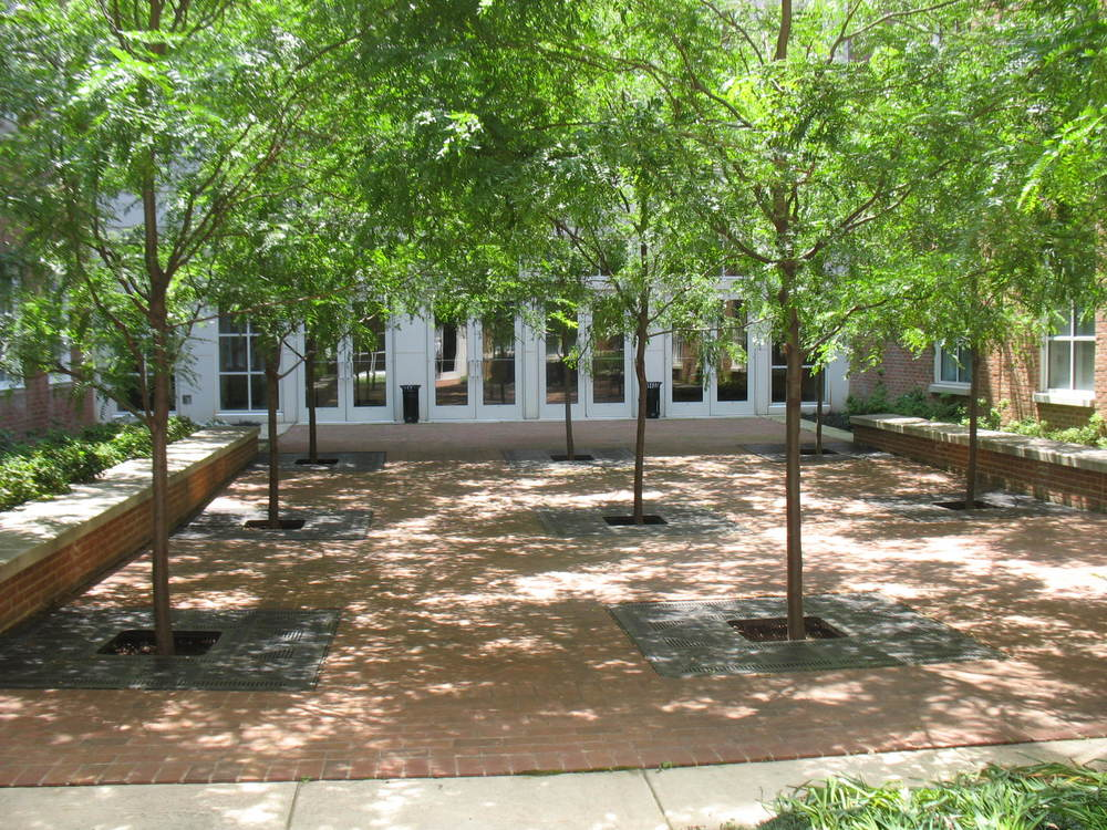 While relaxing with your lunch, enjoy the courtyard view. The courtyard is accessible from your lab and provides a meditative space in which to think about the day's experiments.