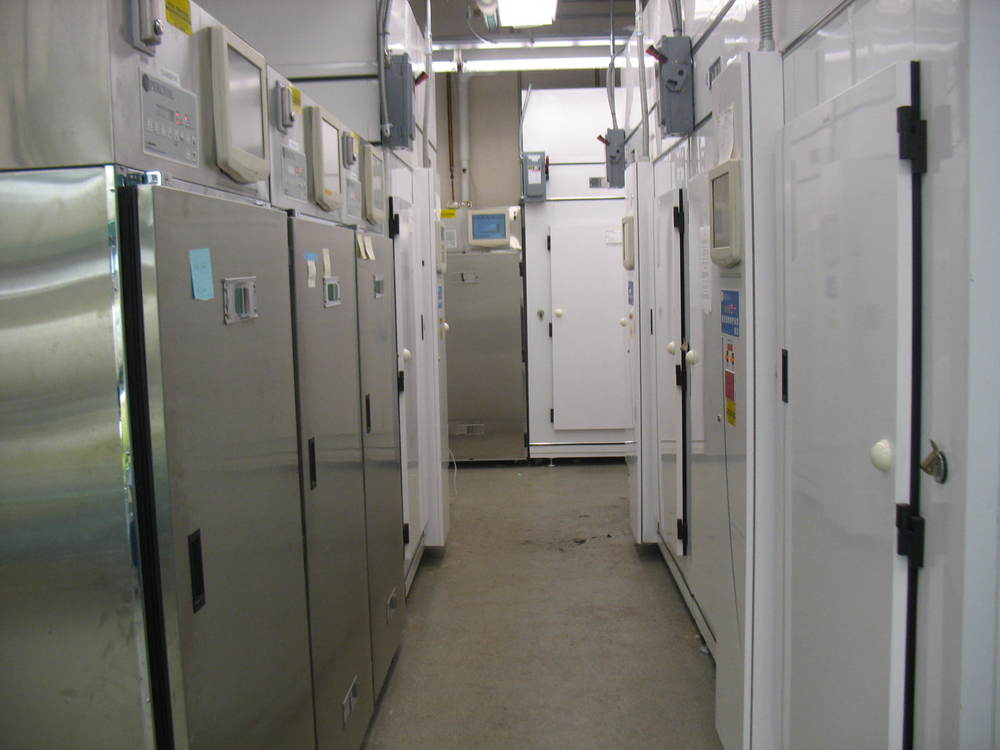 Graduate student also have access to growth chambers and other equipment that facilitate their work.