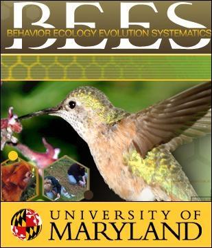 BEES-UMD Logo.jpg