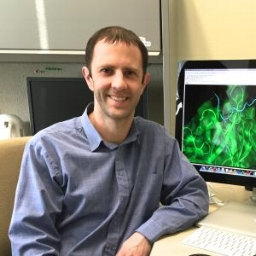 Brian Pierce   Assistant Professor | Institute of Bioscience and Biotechnology Research
