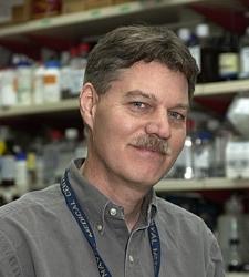 Paul Love   Senior Investigator | Section on Cellular & Developmental Biology, National Institute of Child Health & Development, National Institutes of Health