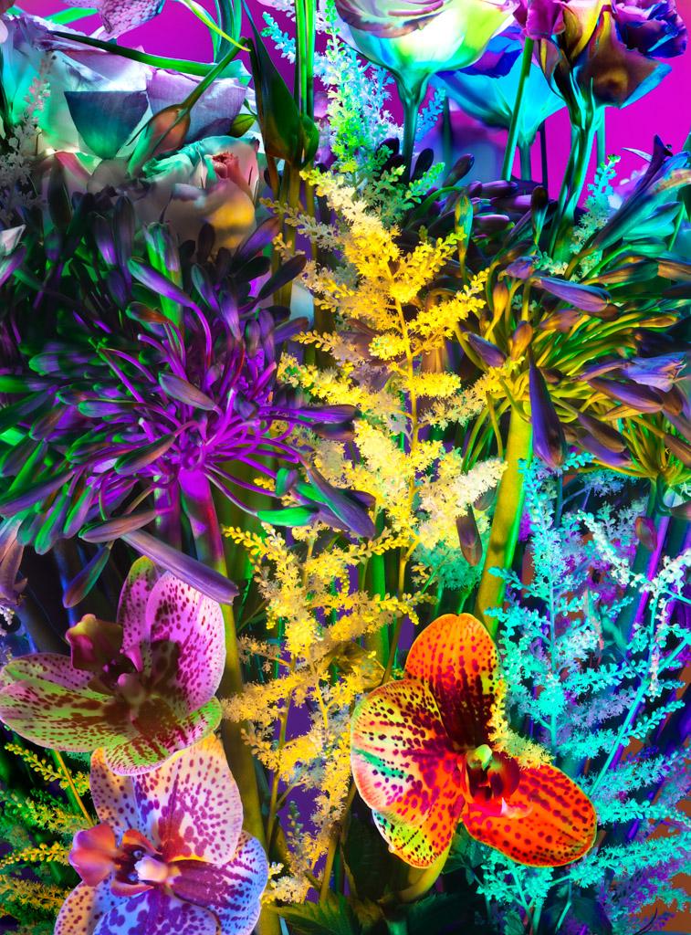 041812_Flowers_07_00012_2elise copy 2.jpg