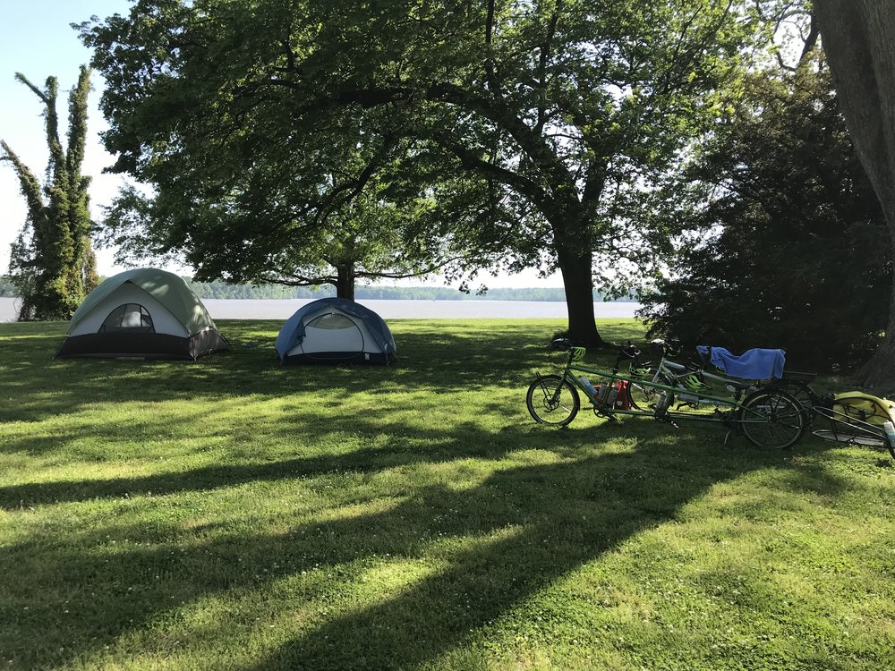 This is our beautiful campsite at Westover overlooking the James River. If you look to the far right in this photo, you will see a yew tree that was apparently planted by George Washington.