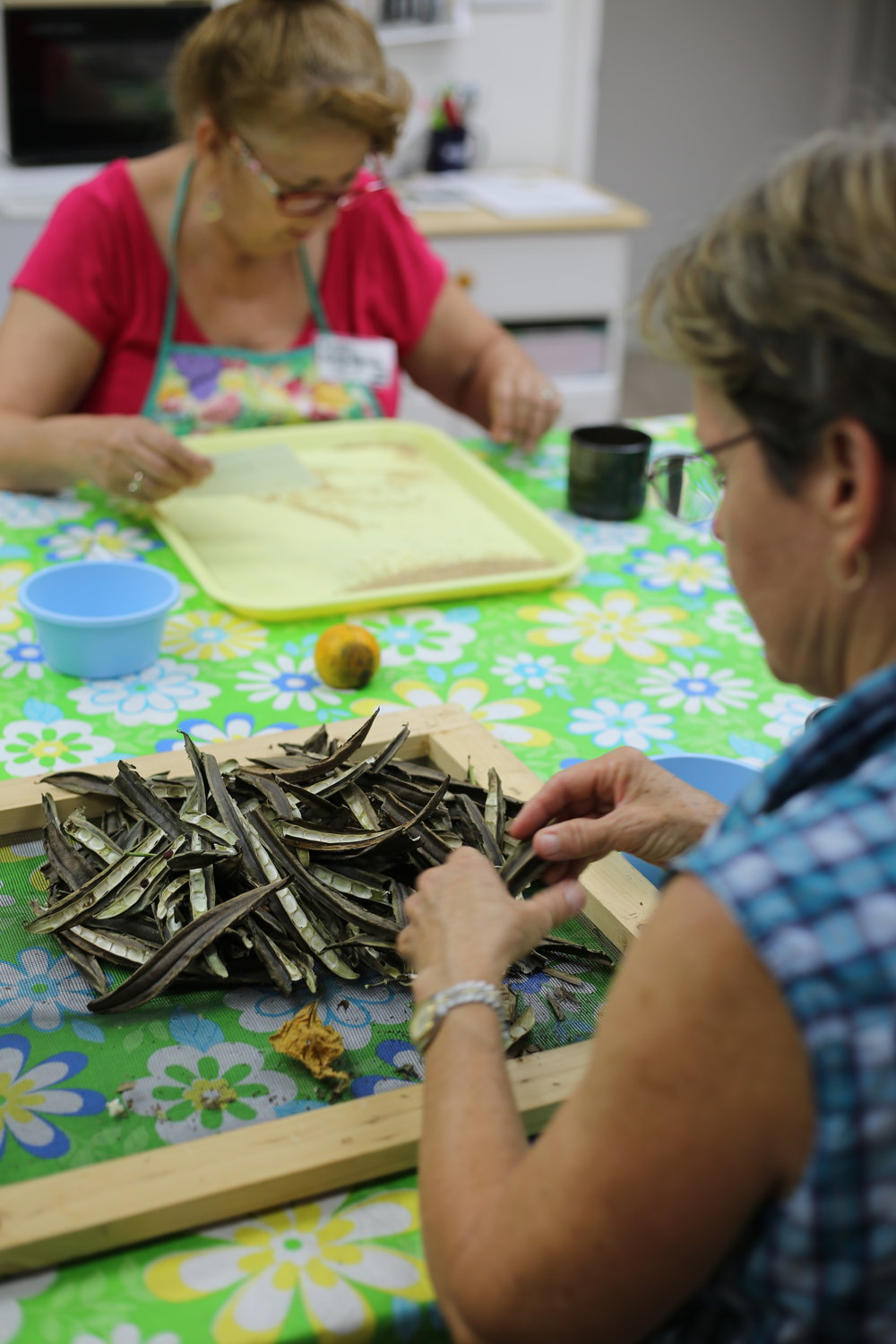 Kathy and Carol - sort seeds to send worldwide!