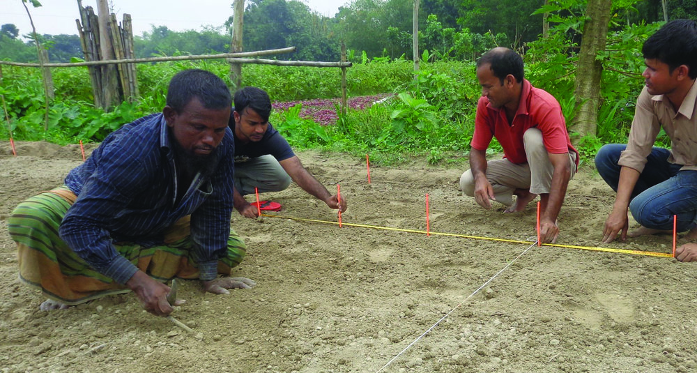 Laying out GMCC Experiment - Bangladesh.jpg
