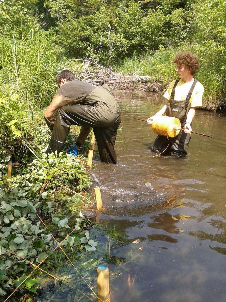 Kyle Lefort (gauche), et Antoine Aucoin (droite) installent un «brush mat» sur le ruisseau Aucoin.