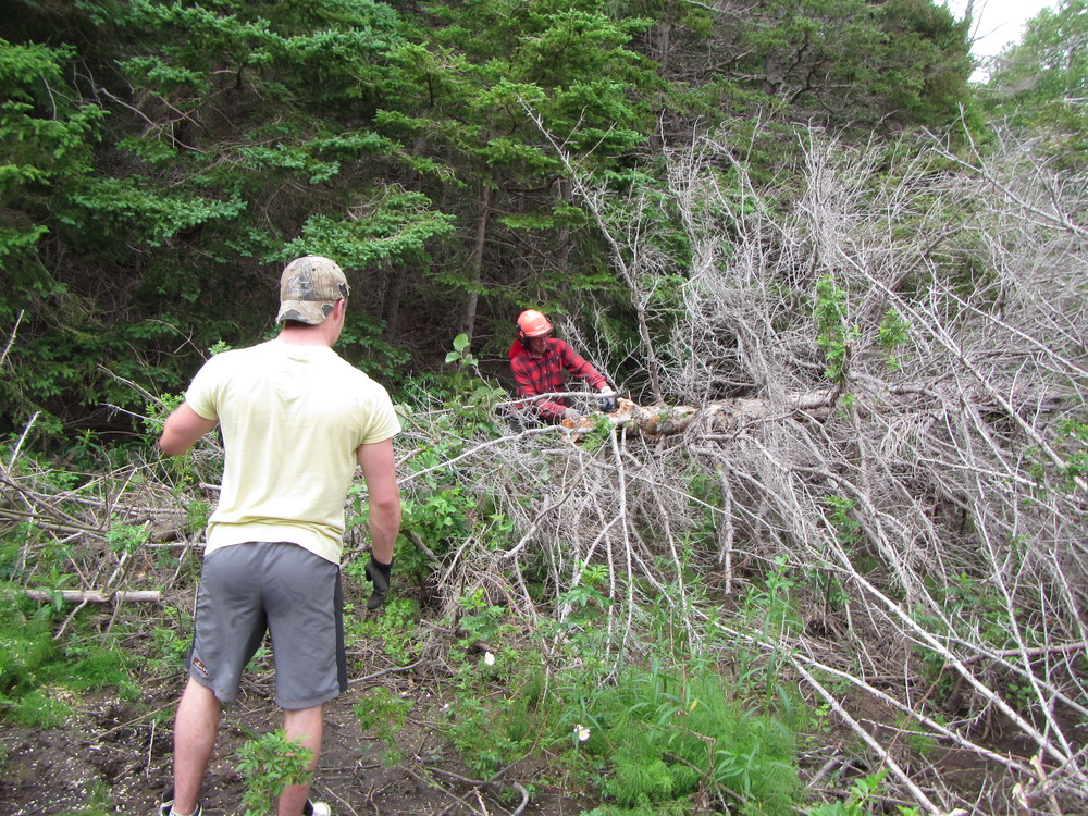 Logan Lapierre and Albert Deveau removing large dead tree blockages to make way for the walking trail.