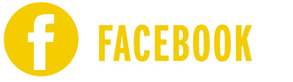 small-gunns-facebook