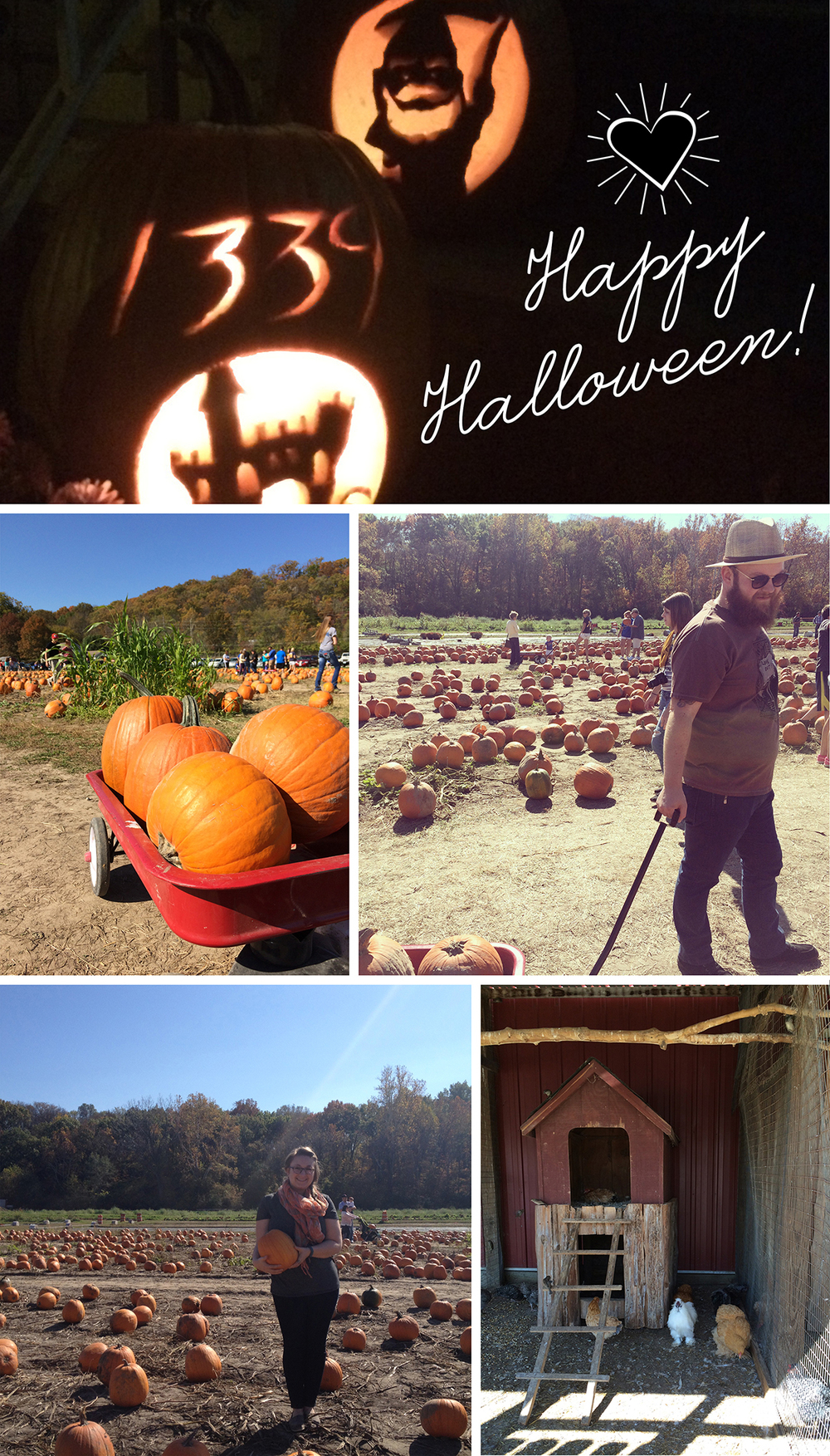 pumpkinpicking2015